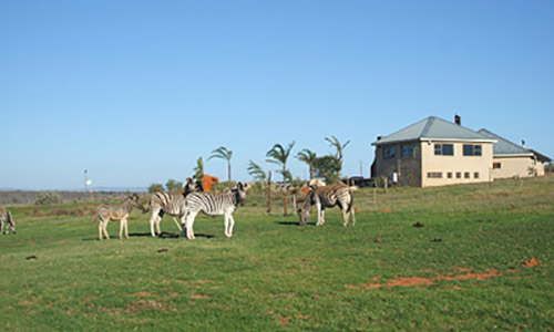 South Africa west coast attractions